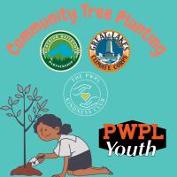 Kindness Club - Tree Planting